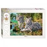 Puzzle  Step-Puzzle-84034 Combien de Tigres ?