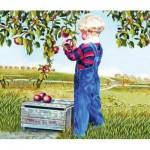 Puzzle  Sunsout-26282 Patricia Bourque - Apple Picking