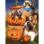 Puzzle  Sunsout-28743 Pièces XXL - Boo Cat