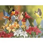 Puzzle  Sunsout-30479 Pièces XXL - William Vanderdasson - Birds on a Fence