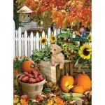 Puzzle  Sunsout-35140 Pièces XXL - Lori Schory - Harvest Puppy
