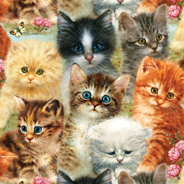 Giordano Studios - A Pile of Kittens