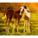 Puzzle  Sunsout-39506 Lesley Harrison - Backlit Foals