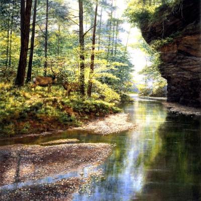 Puzzle Sunsout-44720 Quiet Forest