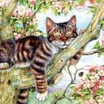Puzzle  Sunsout-50423 Debbie Cook - Sleepy Cat