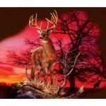 Puzzle  Sunsout-50766 Gordon Semmens - Red Sunset
