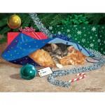 Puzzle  Sunsout-51507 Pièces XXL - Nap Sack Cat