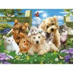 Puzzle  Sunsout-54923 Pièces XXL - Pups n Kittens