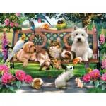 Puzzle  Sunsout-54942 Pièces XXL - Pets in the Park