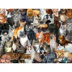Puzzle  Sunsout-60934 Pièces XXL - Cat Collage