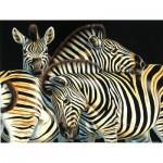 Puzzle  Sunsout-70904 Pièces XXL - Zebras