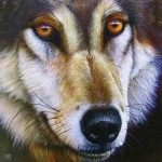 Puzzle   Jurek - Wolf Face