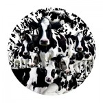 Puzzle   Lori Schory - Herd of Cows