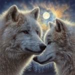 Puzzle   Moonlight Mates
