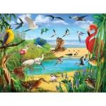 Puzzle   R. Christopher Vest - Florida Birds