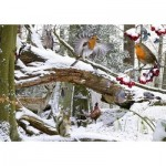 Puzzle  The-House-of-Puzzles-1189 Winter Wood