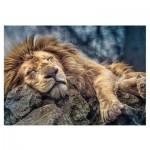 Puzzle  Trefl-10447 Lion