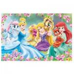 Puzzle  Trefl-14223 Pièces XXL - Disney Princesses