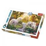Puzzle  Trefl-16349 Jardin Secret