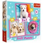 3 Puzzles - Chiens