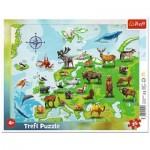 Trefl-31341 Puzzle Cadre - Carte d'Europe Des animaux