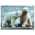 Puzzle  Trefl-37270 Ours Polaires