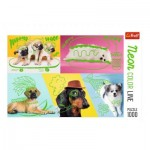 Puzzle   Neon Color Line - Chiens