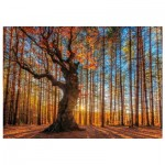 Puzzle en Bois - The King of the Forest